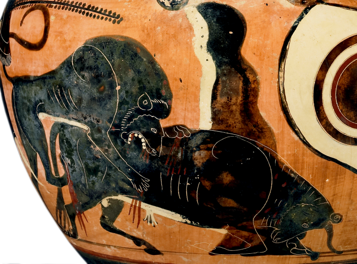 Detail of Attic Black-Figure Column Krater, ca. 525 BCE depicting a lion attacking a bull. Source: Wikimedia Commons