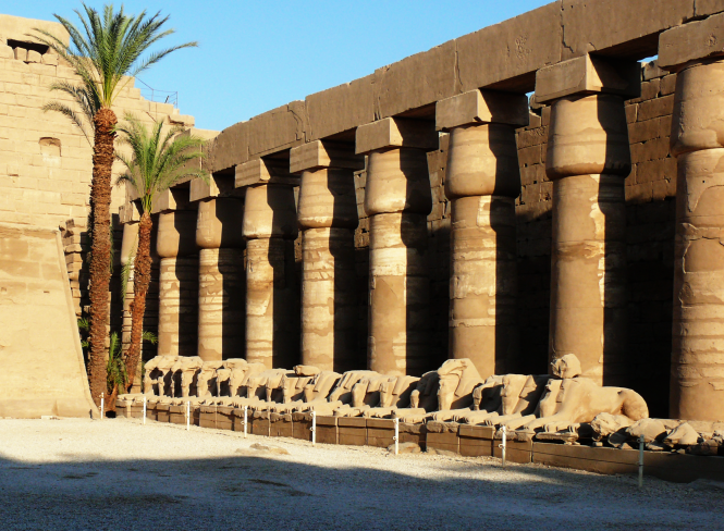 The privileged shade of Amun Temple in Egypt. Source: Wikimedia Commons